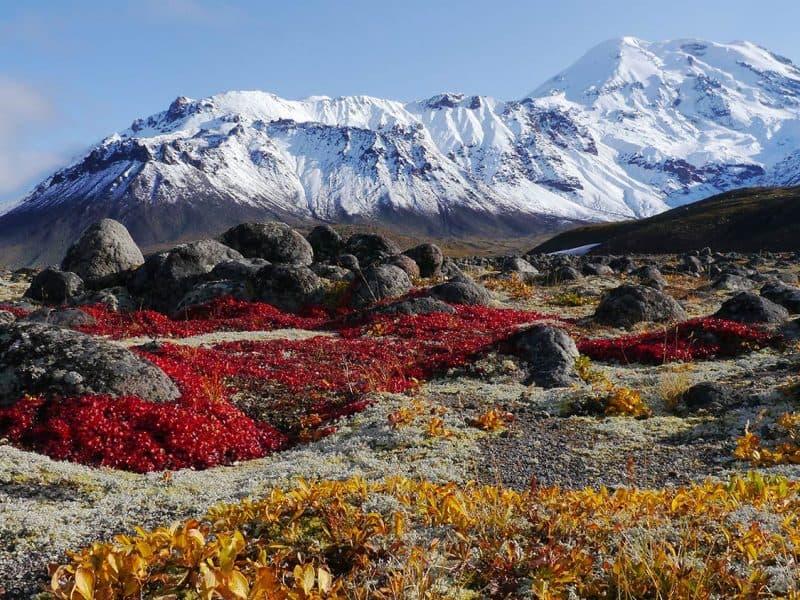 Kamčatka in slikovit pogled na gore in doline