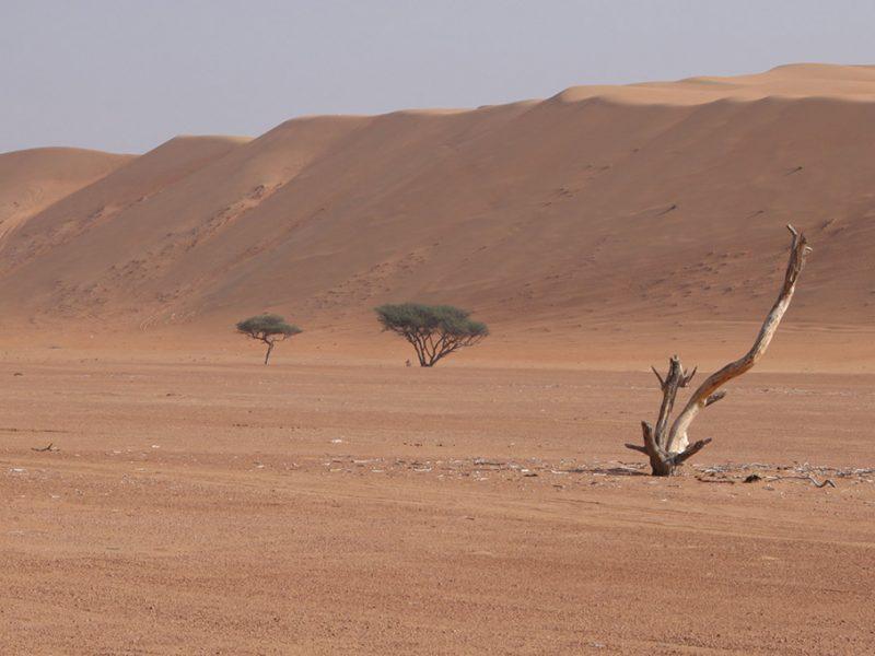 Oman in pogled na puščavo