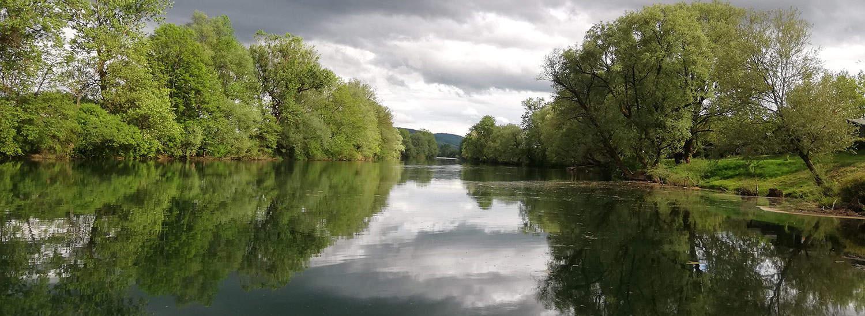 KOLPA-breze-V objemu belokranjskih brez ob Kolpi